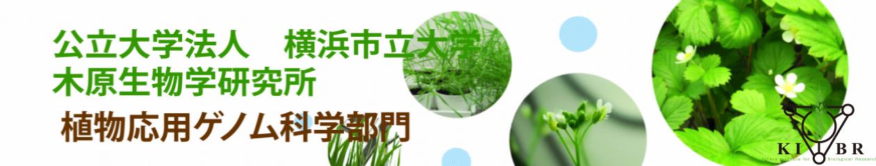 公立大学法人 横浜市立大学 木原生物学研究所 植物応用ゲノム科学部門